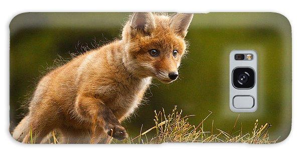 Furry Galaxy Case - Fox by Robert Adamec