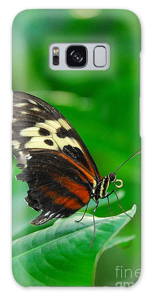 D5l15 Butterfly At Franklin Park Conservatory Galaxy Case