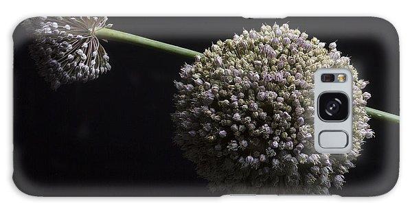 Vase Of Flowers Galaxy Case - Garlic Flowers. Allium. by Bernard Jaubert