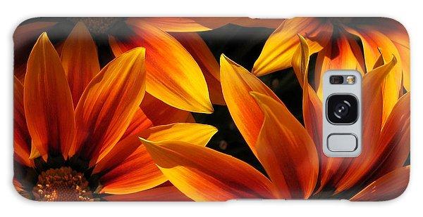 Gazania Named Kiss Orange Flame Galaxy Case by J McCombie