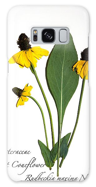 Giant Coneflower Galaxy Case