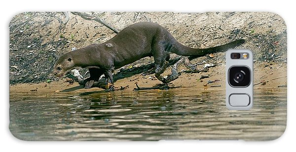 River Otter Galaxy Case - Giant Otter by Tony Camacho/science Photo Library