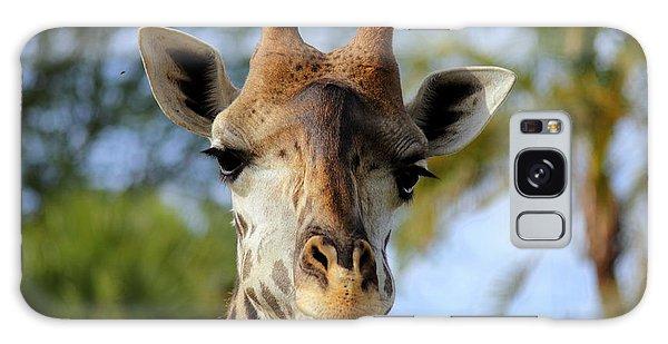 Giraffe Galaxy Case by Lisa L Silva