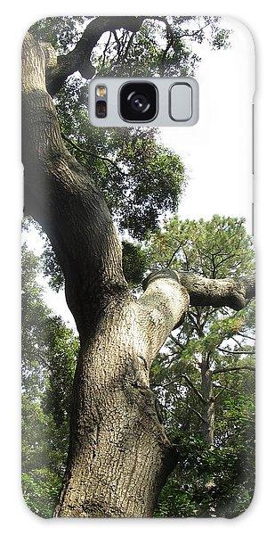 Gnarled Tree 2 Galaxy Case by Cathy Lindsey