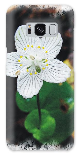 Grass Of Parnassus Galaxy Case