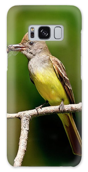 Flycatcher Galaxy Case - Great Crested Flycatcher Myiarchus by David Northcott