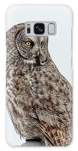 Great Grey Galaxy Case by Yeates Photography