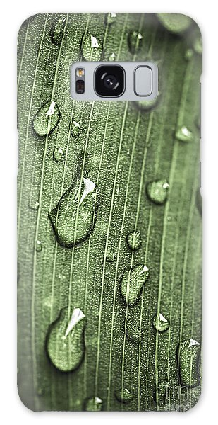 Plants Galaxy Case - Green Leaf Abstract With Raindrops by Elena Elisseeva