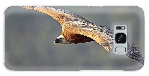 Griffon Vulture In Flight Galaxy Case by Bildagentur-online/mcphoto-schaef
