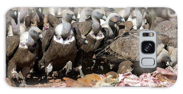 Griffon Vultures Feeding Galaxy Case by Nicolas Reusens