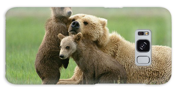 Galaxy Case featuring the photograph Grizzly Cubs Play With Mom by Yva Momatiuk John Eastcott