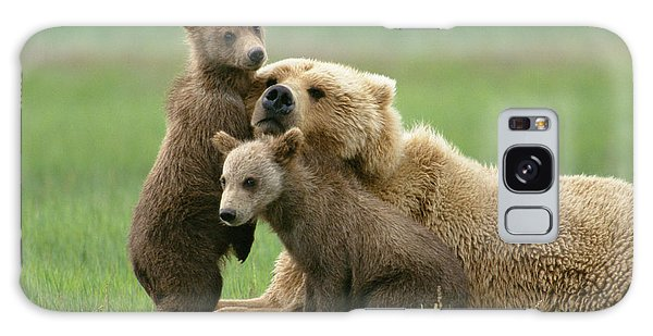 Grizzly Cubs Play With Mom Galaxy Case
