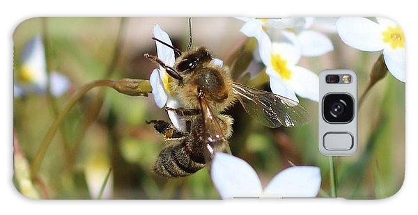 Honeybee On Bluet Galaxy Case
