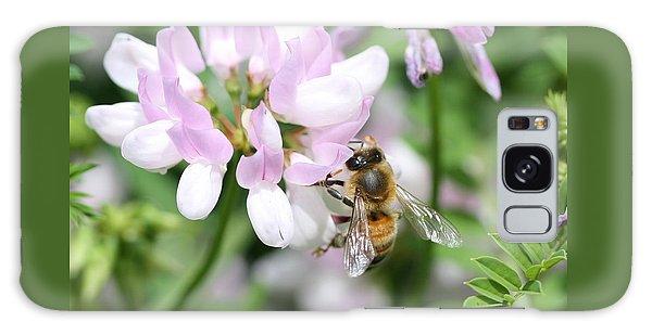 Honeybee On Crown Vetch Galaxy Case