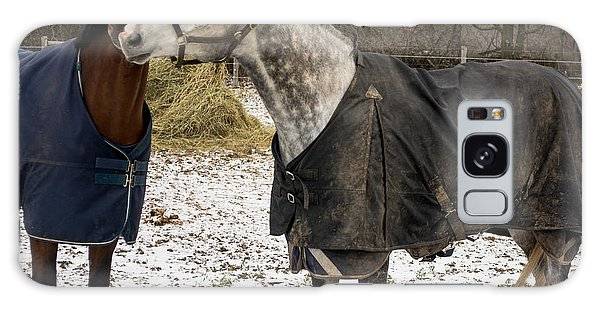Horse Whispers Galaxy Case