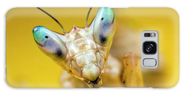 Indian Head Galaxy Case - Indian Flower Mantis by Alex Hyde