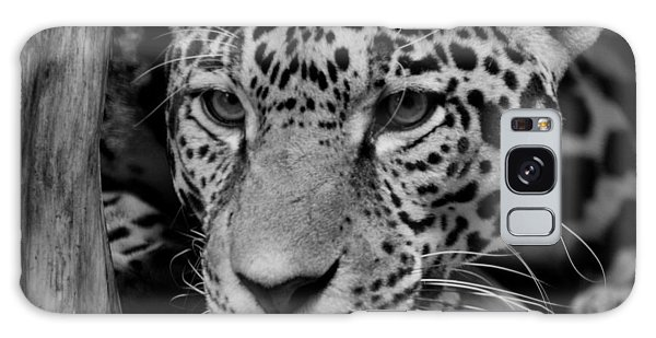 Jaguar In Black And White II Galaxy Case by Sandy Keeton