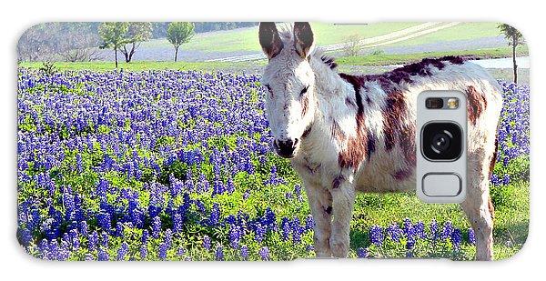 Jesus Donkey In Bluebonnets Galaxy Case