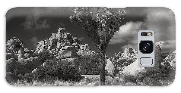 Joshua Tree National Park Galaxy Case
