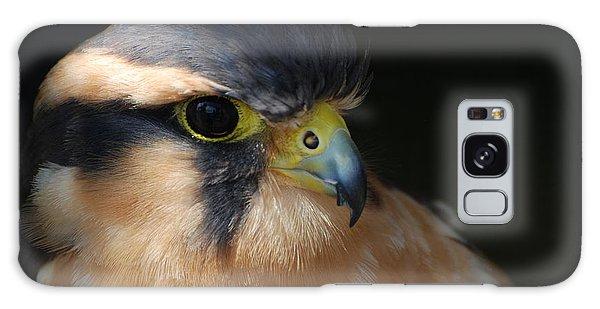Kestrel Falcon Galaxy Case