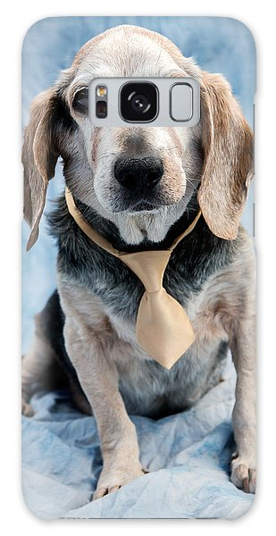 Galaxy Case - Kippy Beagle Senior by Iris Richardson