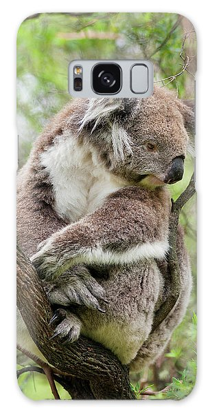 Koala (phascolarctos Cinereus Galaxy Case