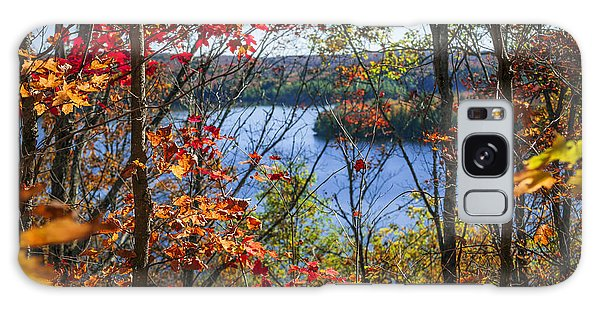 Framing Galaxy Case - Lake And Fall Forest by Elena Elisseeva