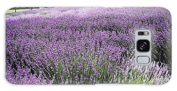Lavender Farm Landscape Galaxy Case by Christy Beckwith