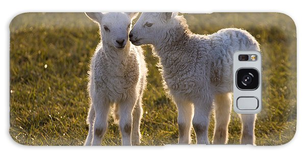 Sheep Galaxy Case - Little Gossips by Angel Ciesniarska