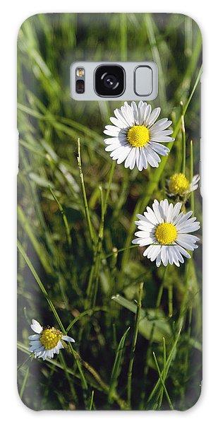Little White Daisies Galaxy Case