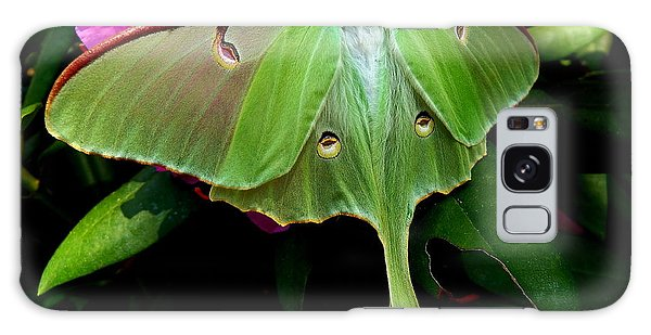 Lady Luna Moth Galaxy Case
