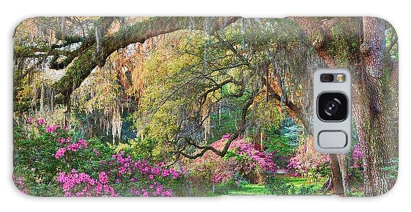 Magnolia Plantation Azaleas Galaxy Case