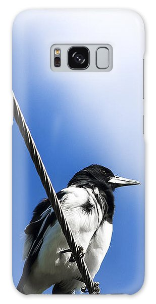 Magpie Up High Galaxy Case by Jorgo Photography - Wall Art Gallery