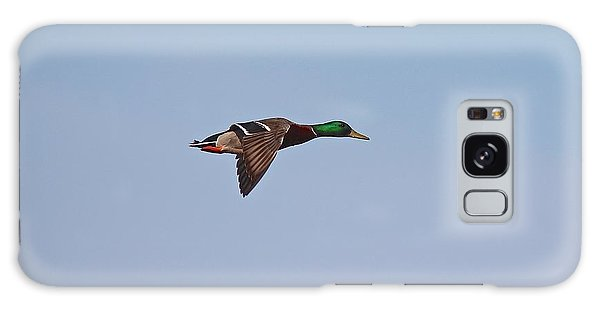 Mallard Drake Flight Galaxy Case