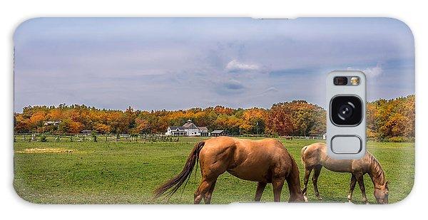 Maryland Pastures Galaxy Case