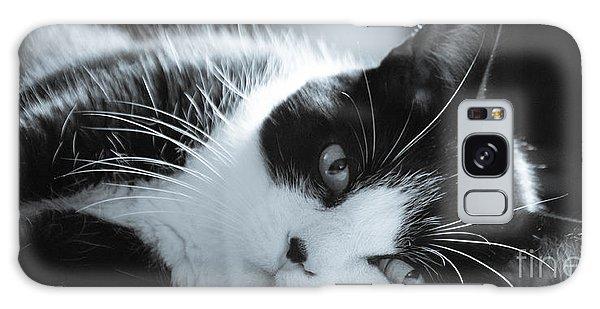 Max The Cat Galaxy Case by David Warrington