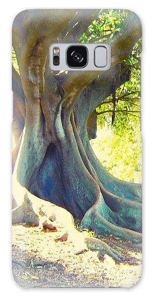 Morton Bay Fig Tree Galaxy Case