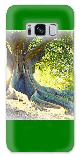 Morton Bay Fig Tree Galaxy Case by Leanne Seymour