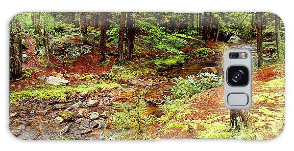 Mountain Stream With Hemlock Tree Stump Galaxy Case