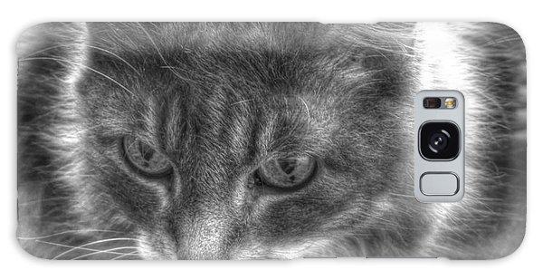 My Cat Galaxy Case by Yury Bashkin