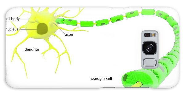 Nervous System Galaxy Case - Myelinated Neuron Anatomy by Science Photo Library