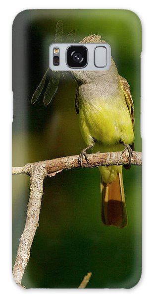 Flycatcher Galaxy Case - North America, Usa, Central by Joe and Mary Ann Mcdonald