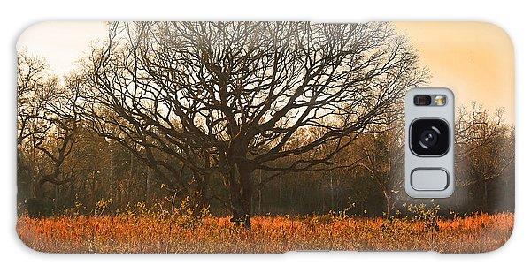 Oak Tree In A Field Galaxy Case by Ronald Olivier