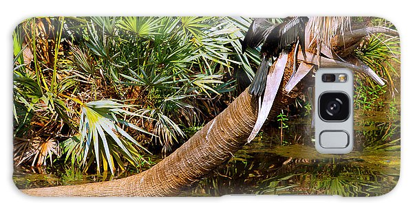 Anhinga Galaxy Case - Oriental Darter Anhinga Melanogaster by Panoramic Images