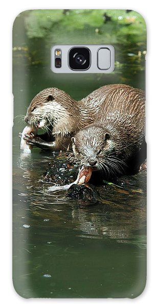 Otter Galaxy Case - Oriental Small-clawed Otters Feeding by Chris B Stock/science Photo Library