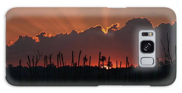 Orlando Wetlands Sunrise Galaxy Case