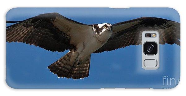 Osprey In Flight Galaxy Case by Ursula Lawrence
