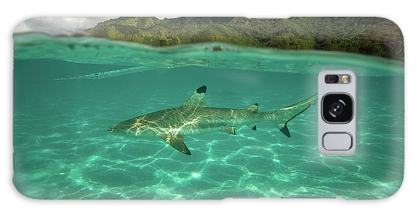 Islands In The Sky Galaxy Case - Over Under, Half Water Half Land, Shark by Panoramic Images