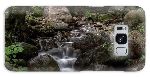 Parfrey's Glen Creek Galaxy Case
