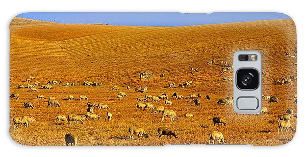 Sheep Grazing In The Countryside Tarquinian Galaxy Case